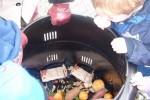 hertz_composting_large