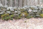 new_england_stone_wall_medium_new_england_stone_wall_medium