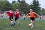 stars-premiere-soccer