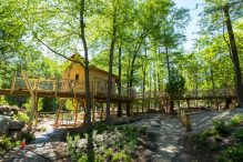 the-discovery-museums-discovery-woods-2016-06-24-3073