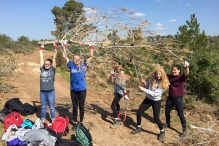 Clearing dead trees and limbs in the Ofer Forest