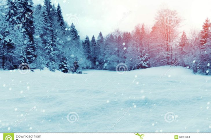 christmas-winter-background-snow-trees-pine-60391704