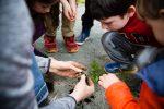 kids nature 3