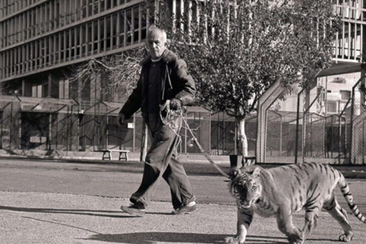 "Mordechai Shorenstein in ""There Are No Lions in Tel Aviv"" (Promotional still)"