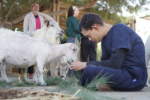 An ALEH Negev resident at the petting zoo (Courtesy photo)