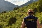 (Courtesy photo: BaMidbar Wilderness Therapy )