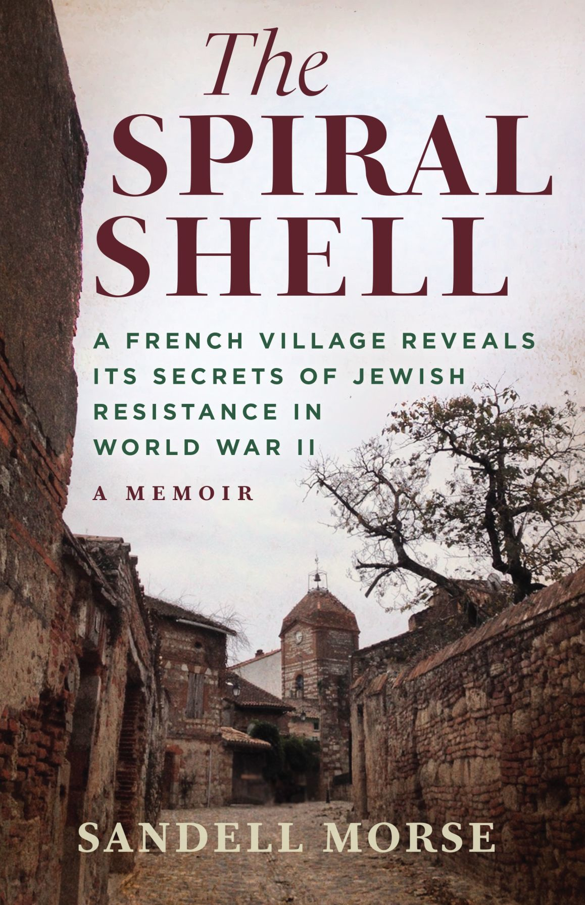 The Spiral Shell by Sandell Morse