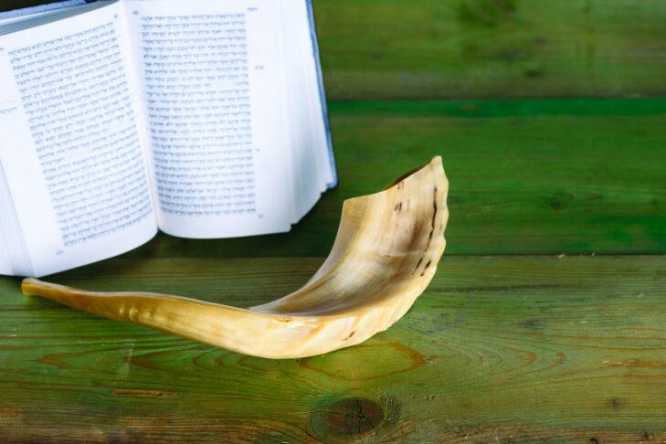 Rosh Ha Shana- Jewish new year and Yom Kippur composition of an Torah and Shofar horn on wood vintage green background.