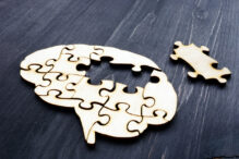 Brain from wooden puzzles. Mental Health and problems with memory.