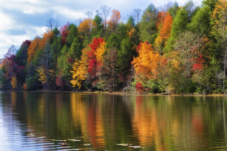 Colorful fall colors reflect along the shoreline of Bay Mountain Lake Park in Kingsport Tennessee.