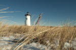LIghthouse with dried grass and snow in the foreground