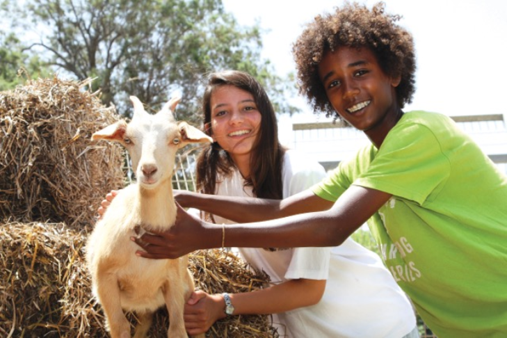 Youth Aliyah students in the animal therapy program (Photo: Hadassah)