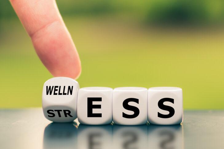 (Photo: Fokusiert/iStock)