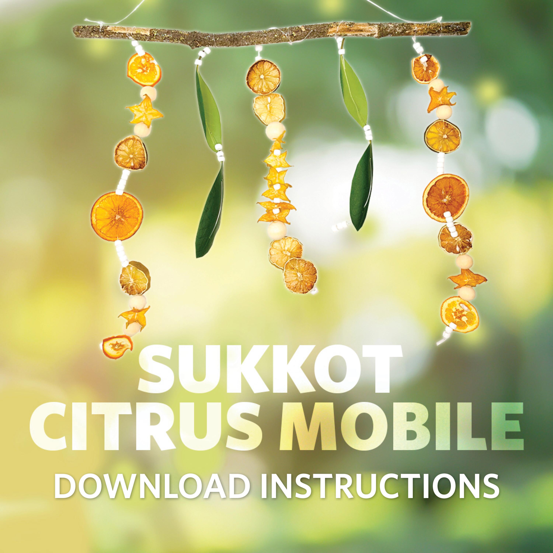Citrus Mobile Download Instructions