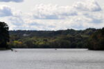 Spy Pond in Arlington Massachusetts (Photo: AB1358/iStock)