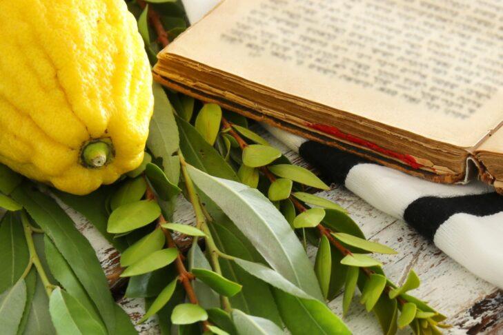 jewish-festival-of-sukkot-traditional-symbols-etrog-lulav-hadas-arava-picture-id1029298276