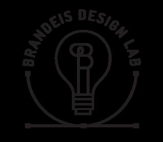 Brandeis Design Lab Teen Fellowship