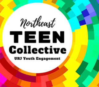 Northeast Teen Collective